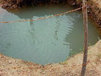 Groundwater rises by 1.52 metres in AP