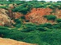 7,000 cases of illegal mining last year
