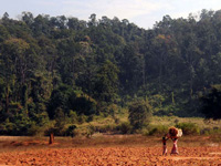 Chg: Villagers seek PM's help to check coal mining in forests