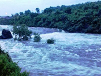 NGT, CPCB teams to collect river samples from Muzaffarnagar