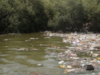 Maharashtra govt to set up plant to treat polluted Mithi river