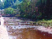 Order on river pollution welcomed