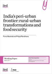 Rural-urban transformations and food security in India: the challenges and opportunities of peri-urbanisation