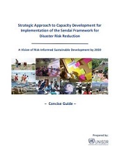 Strategic approach to capacity development for implementation of the Sendai Framework for Disaster Risk Reduction: a vision of risk-informed sustainable development by 2030