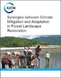 Synergies between climate mitigation and adaptation in forest landscape restoration
