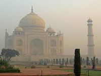 Agra: Insect attack on Taj brings back green and black patch on marble