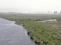 Guj govt plans to de-silt 13,000 water bodies ahead of monsoon