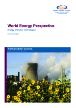 World energy perspective: energy efficiency technologies