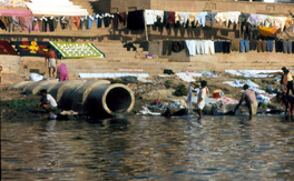 Sick water?: the central role of wastewater management in sustainable development.
