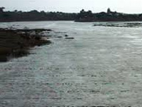 Narmada-like clean-up drive for other rivers too: Shivraj