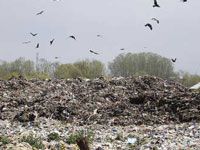 Blow to waste management plant project in Jalandhar