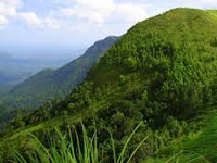 Report on Western Ghats 'suppressed' by authorities